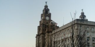 Liver Building Cultural Strategy