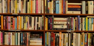 bookshelves- free to use licence, no copyright